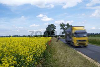Raps Feld LKW | rape field truck