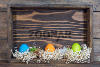 Easter colorful eggs in the nests in cell boxes. Beautiful easter holiday background with copy space.