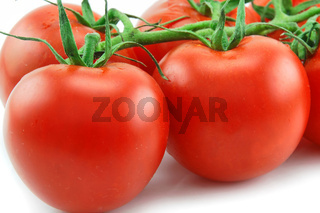 Close-up of Ripe Tomatoes Isolated on White