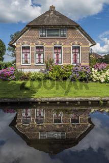 House with Hydrangea Giethoorn Overijssel