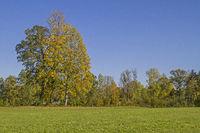 Autumn landscape in the Isarwinkel