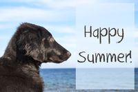 Dog At Ocean, Text Happy Summer
