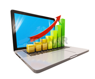 Growth Chart on Laptop Computer