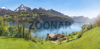 Alpine lake with mountains and spring meadows