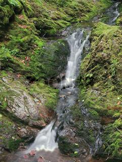 Wasserfall eines Wildbaches