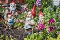 Garden gnomes in Schwaebisch Hall, Germany
