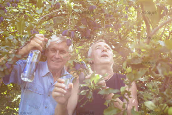 Excited seniors with alcohol under the plum tree