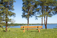 Wooden bench at park with lake view