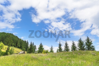 Summer alpine scenery with cloudscape
