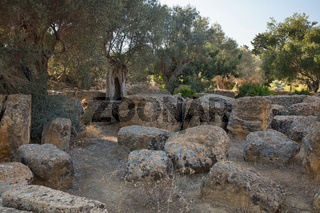 View of the ruins in the Valley of the Temples in Agrigento