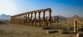 Panorama of Palmyra columns and ancient city, Syria