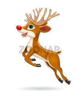 Running little deer