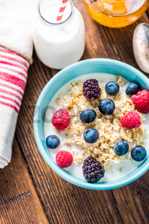 Bowl with oat porridge and berry fruits