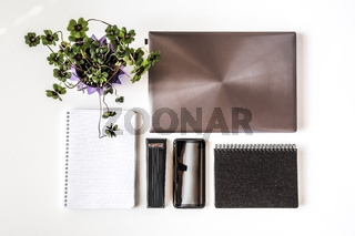 Desktop with office gadgets and plant