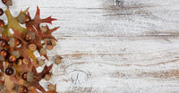 Autumn acorns and leaves on rustic white wood background