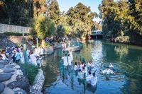 Christian pilgrims enter Jordan River waters