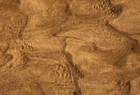 Photo of sandy river bottom