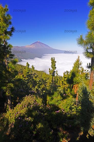 Vulcano Pico del Teide, Teide-Nationalpark, Parque Nacional de las Cañadas del Teide, Tenerife