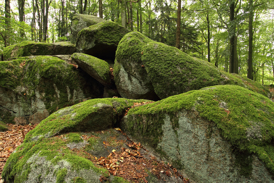Granodiorit Rocks