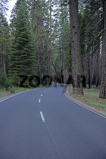 Strasse im  Yosemite Nationalpark, Kalifornien, USA