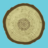 Cross section of tree stump isolated on blue background, Eps 10 illustration.