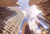 multiple office skyskrapers