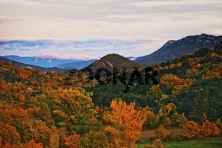 Landschaft im Herbst, Provence, France