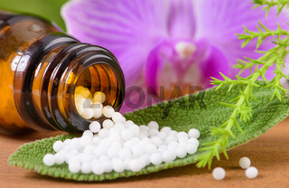 alternative medicine with homeopathic and herbal pills