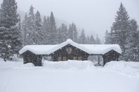 heavy snow ... Yellowstone-Nationalpark *Northeast Entrance*