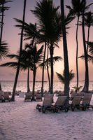 Beach with palm trees at sunrise