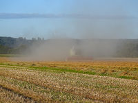 Cereal crop in Germany