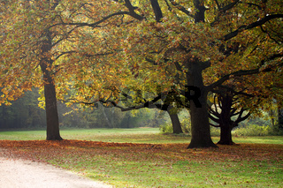 Tiergarten 019. Deutschland