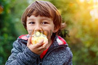 Kleiner Junge Kind Apfel Obst Früchte essen draußen Herbst Natur gesunde Ernährung