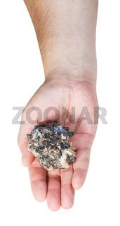 top view of zinc and lead mineral ore on male palm