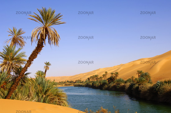 Desert Lake Um el Maa Lake, Libya
