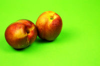 Two fresh nectarines on a bright green background
