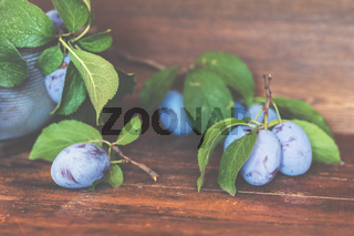 Fresh plums with green leaves on the dark wooden table. Shallow depth of field. Toned.