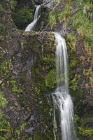 Kitekite Falls, Waitakere Ranges Regional Park, New Zealand