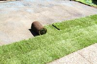 Lay turf roll