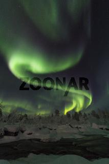 Nordlicht (Aurora borealis) ueber mondbeschienener Winterlandschaft, Lappland