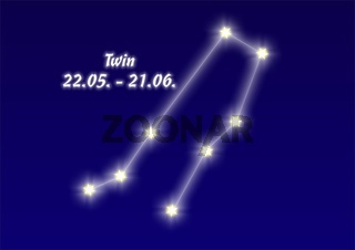 Zwilling, Twin