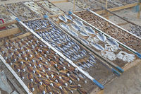 Fish drying in the sun on the beach of Nazare, Leiria, Portugal, Europe