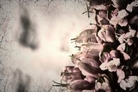 Surreal flowers with blur