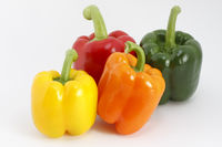 Bunte Paprikaschoten/Colored peppers