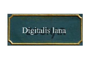 schild Fingerhut, wolliger,Digitalis lana