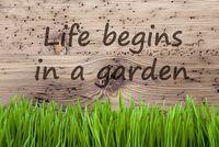 Bright Wooden Background, Gras, Quote Life Begins In A Garden
