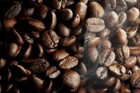 Hot roasted coffee beans