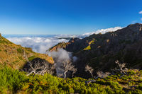 Hiking Pico Ruivo and Pico do Arierio - Madeira Portugal