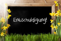 Sunny Spring Narcissus, Chalkboard, Entschuldigung Means Excuse