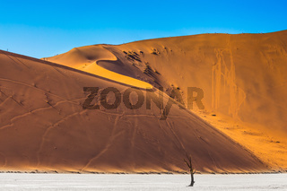 On the crest of the dunes are tourists
